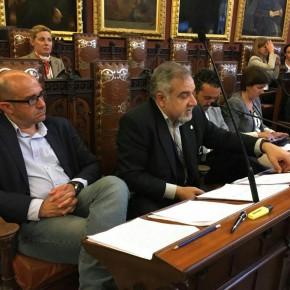 Ciudadanos (Cs) Palma critica que Cort gaste dinero en apelar contra la medida cautelar que pesa sobre la demolición de Sa Feixina