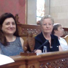 """Serra: """"El PIAT se ha elaborado con una falta de diálogo y consenso con todas las fuerzas políticas y las organizaciones del sector"""""""