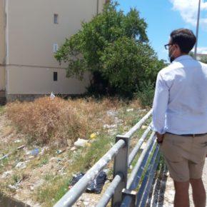 Cs Palma reclama al Ayuntamiento la limpieza del torrente de La Vileta